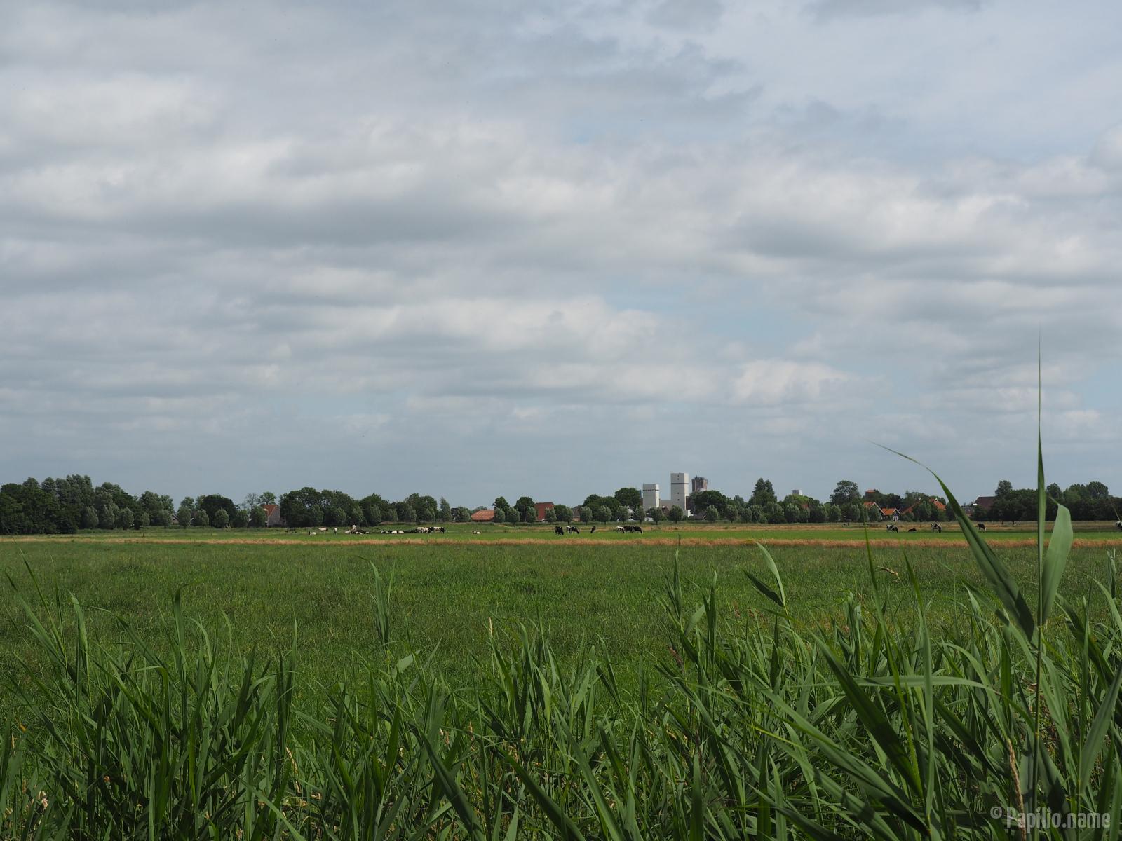 555-E-M-10-Zwettepoel-038